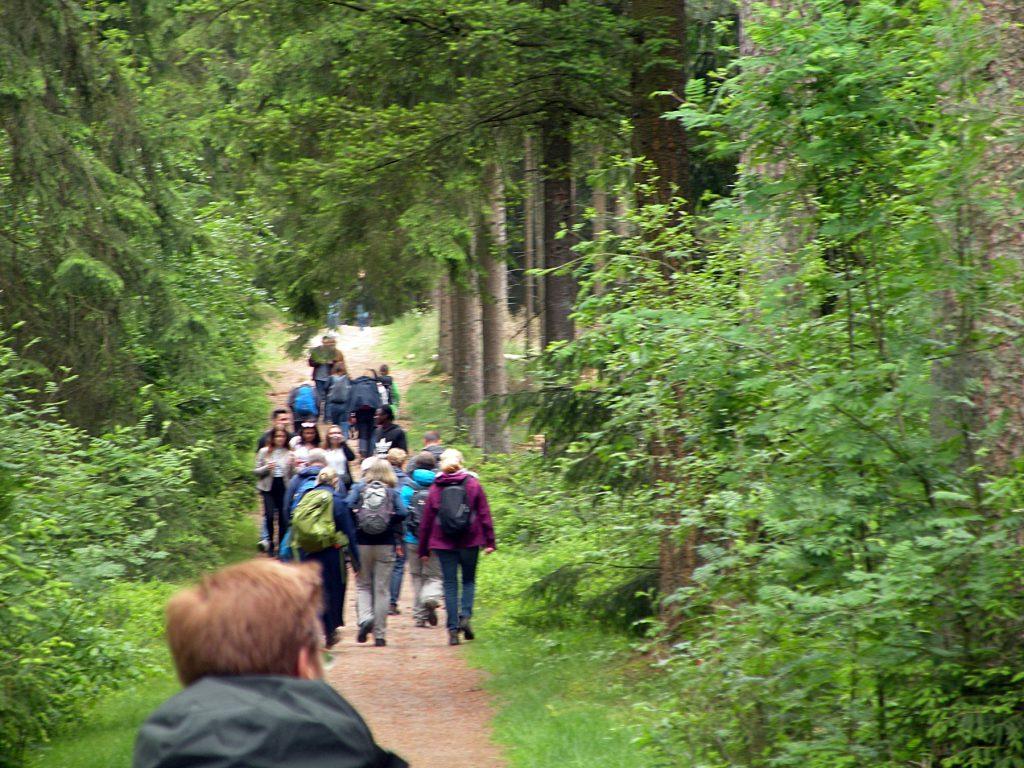 jetztaberlos-tour zwischen Kleinem Brunsberg und Pferdekopf. Auf dem Weh zur Einkehr im Schafstall im Büsenbachtal