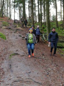 Wanderung von Singlewanderland durch die Schwarzen Berge und die Fischbeker Heide. Hier sehen wir die Gruppe beim Abstieg aus den schwarzen Bergen