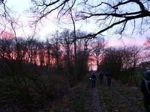 Eine jetztaberlos-Wanderung, durch die Oeringer Feldmark dem Sonnenuntergang entgegen, ein farbenfrohes Schauspiel