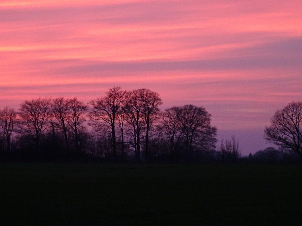 Ein farbenfreudiger Sonnenuntergang, vor uns auf dem dem Weg durch die Oeringer Feldmark zum Grünkohlessen, eine jetztaberlos-tour