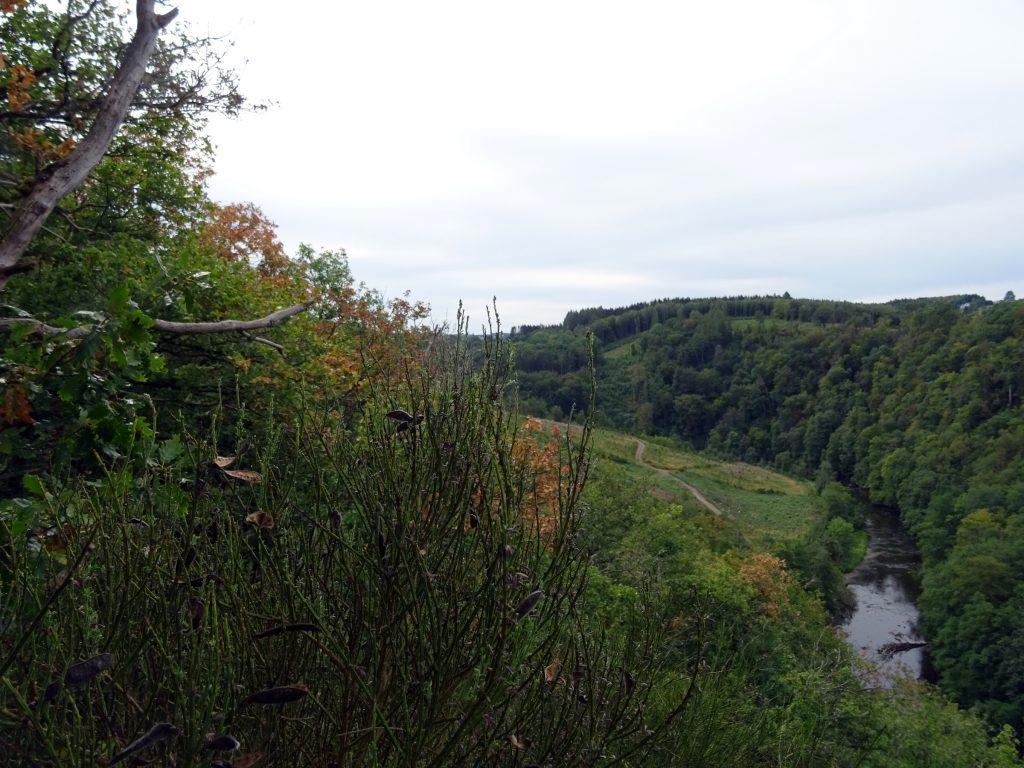 Das Tal der Ourthe bei Nandrin, südlich von La Roche.