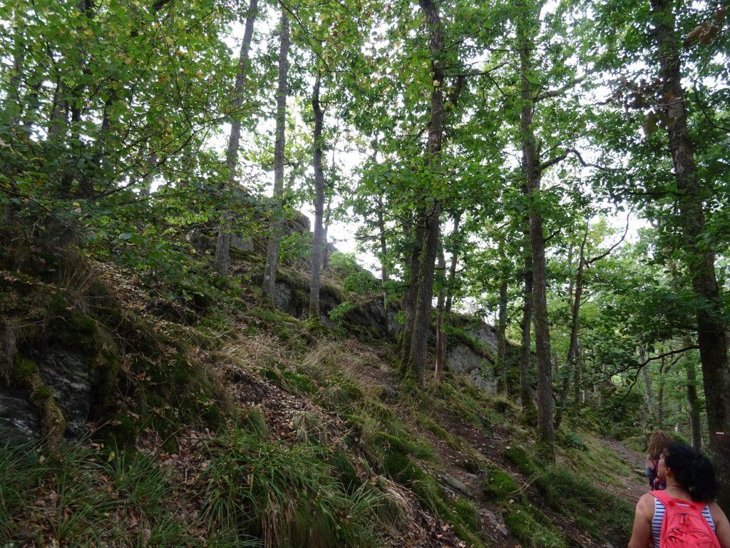 Der Wanderweg parallel zur Ourthe bei Nandrin